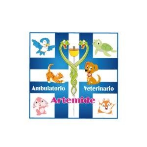 ambulatorioartemide